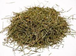 Πολύκομπο: Το βότανο με τις ευεργετικές ιδιότητες