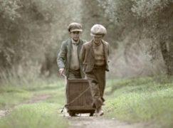 Ενα μαγικό ταξίδι: Εκπληκτικό φιλμ για το παραδοσιακό μάζεμα ελιάς στην ελληνική επαρχία
