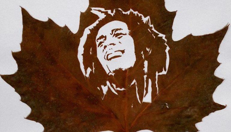 Η Τέχνη από φύλλα του Omid Asadi