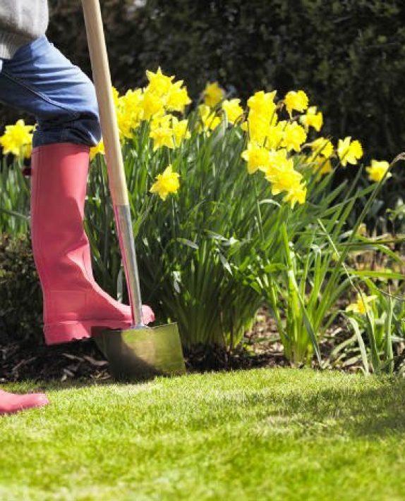 Κηπουρική: πώς μπορεί να βελτιώσει την υγεία της οικογένειας