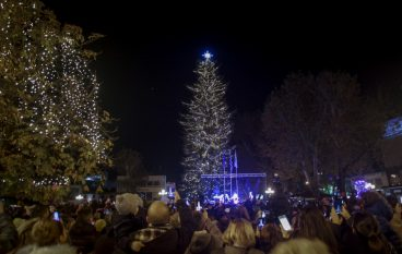 Τρίκαλα: Φωταγωγήθηκε το ψηλότερο φυσικό χριστουγεννιάτικο δέντρο της Ελλάδας