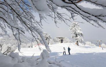 Έξι μαγικές εικόνες από το χιονοδρομικό κέντρο της Βασιλίτσας